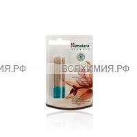 Himalaya Бальзам для ГУБ интенсивное увлажнение с маслом какао 10 г *6*48