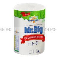 Полотенца Мягкий Знак Mr. Big  2-х сл. 1 рул.  белые (24)